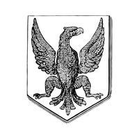Bird crest