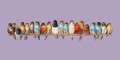 En abborre av fågel (1880) av Hector Giacomelli (1822-1904). Digitalt förbättrad av rawpixel.