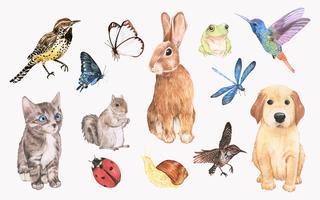 Samling av handdragen djur