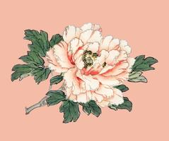 Pink rose by K?no Bairei (1844-1895). Digitally enhanced from our own original 1913 edition of Bairei Gakan.