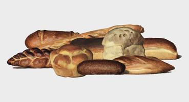 The Grocer's Encyclopedia (1911), a vintage collection of various types of baked bread loaves. Digitally enhanced by rawpixel.
