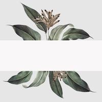 Tropisk växt mockup illustration