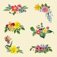 Illustrazione di sfondo floreale