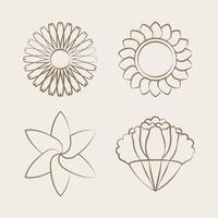 Set of blooming flower drawing design vector