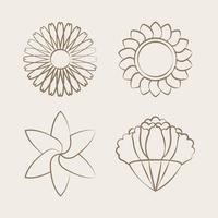 Set of blooming flower drawing design vector
