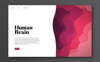 Human brain informational website graphic