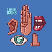 Humano 5 sentidos iconos ilustración