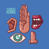 Human 5 senses icons illustration