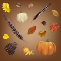 Collection de vecteur de feuilles d'automne