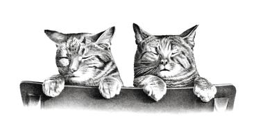 Cats by Thomas Hunter. Original from Library of Congress. Digitally enhanced by rawpixel.