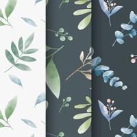 Ensemble de vecteurs de motif de feuilles d'aquarelle