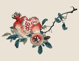 Pomegranate by K?no Bairei (1844-1895). Digitally enhanced from our own original 1913 edition of Bairei Gakan.