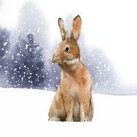 Wilder Hase in einem Wintermärchen gemalt durch Aquarellvektor