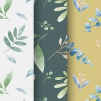 Set of watercolor leaf patterns vector