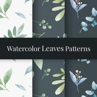 Conjunto de vectores de patrón de hojas de acuarela