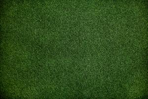 Papel de parede grama verde com espaço de design
