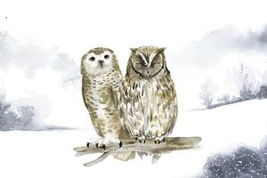 Paar uilen in een winter wonderland aquarel stijl vector