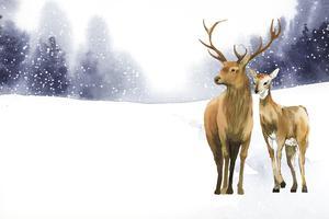 Par de veados desenhados à mão em um vetor de estilo aquarela de paisagem de inverno