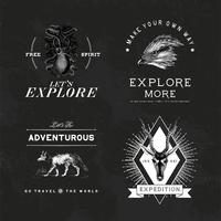 Insamling av äventyrslogotypsdesignvektorer
