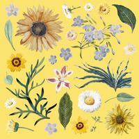 Floral background pattern