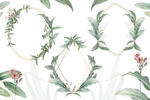 Green floral wedding invitation frames vector