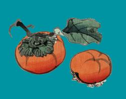 Persimmons by K?no Bairei (1844-1895). Digitally enhanced from our own original 1913 edition of Bairei Gakan.