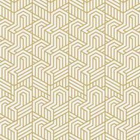 Interlacement stylish pattern vector illustration