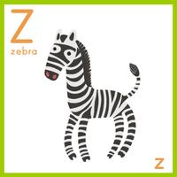 Alphabet Z and a zebra