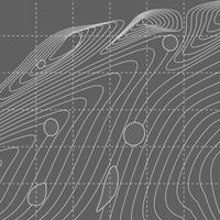 White and gray abstract contour line map