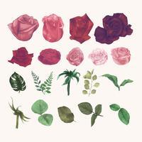 Blommor och löv kollektion