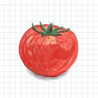 Hand drawn tomato watercolor style