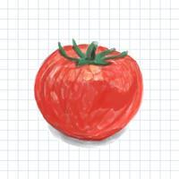 Estilo de aquarela mão desenhada tomate