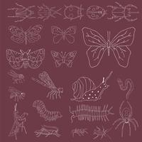 Vektor av olika slags insekter