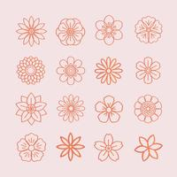 Floral pattern and floral icons
