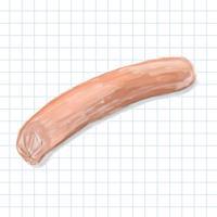 Hand drawn hotdog watercolor style