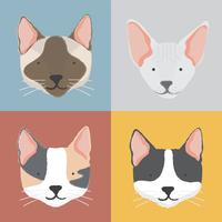 Illustration of cats collection