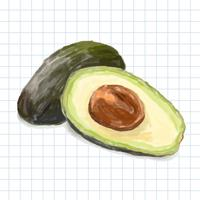 Hand drawn avocado watercolor style isolated