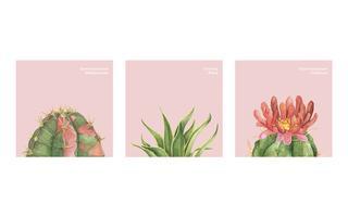 Handdragen kaktus och succulenter