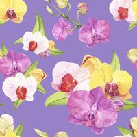 Flor de orquídea dibujada a mano aislada