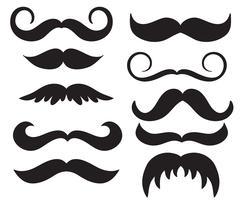Conjunto de vectores vintage mans bigote. Ilustración de letras de caligrafía EPS10