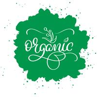 Organic word on green abstract background. Hand drawn Calligraphy lettering Vector illustration EPS10