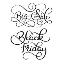Big Sale and Black Friday calligraphy text on white background. Hand drawn lettering Vector illustration EPS10