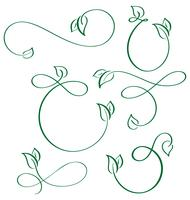 designer calligraphic elements green leaf icons vegan set on white background