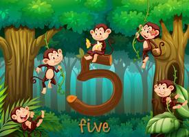 Fünf Affen im Dschungel