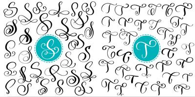 Set letter S, T. Hand drawn vector flourish calligraphy. Script font. Isolated letters written with ink. Handwritten brush style. Hand lettering for logos packaging design poster