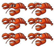 Lobster with facial expressions