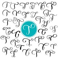 Impostare la lettera T. calligrafia fiorire di vettore disegnato a mano. Font script Lettere isolate scritte con inchiostro. Stile del pennello scritto a mano. Iscrizione a mano per poster di design packaging loghi