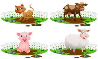 Four types of animals in the mud