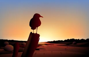 En solnedgång över öknen med en stor fågel