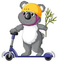 A koala playing kick scooter